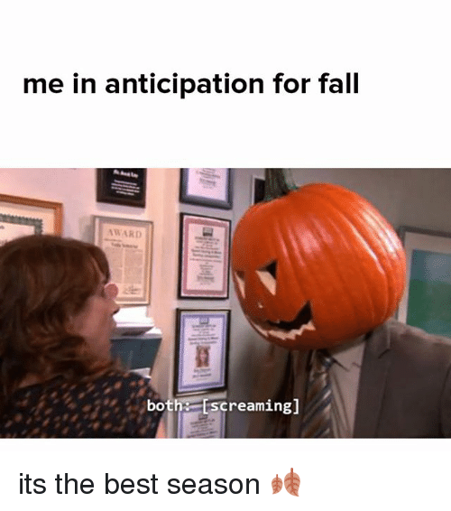 Fall, Memes, and Best: me in anticipation for fall  both Escreaming] its the best season 🍂