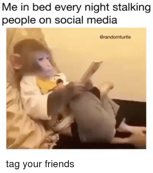 Friends, Memes, and Social Media: Me in bed every night stalking  people on social media  @randomturtle tag your friends
