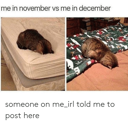 On Me: me in november vs me in december someone on me_irl told me to post here