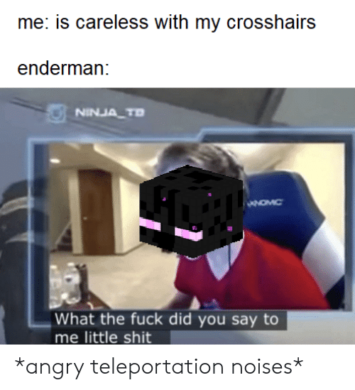 did-you-say: me: is careless with my crosshairs  enderman:  NINJA TD  What the fuck did you say to  me little shit *angry teleportation noises*