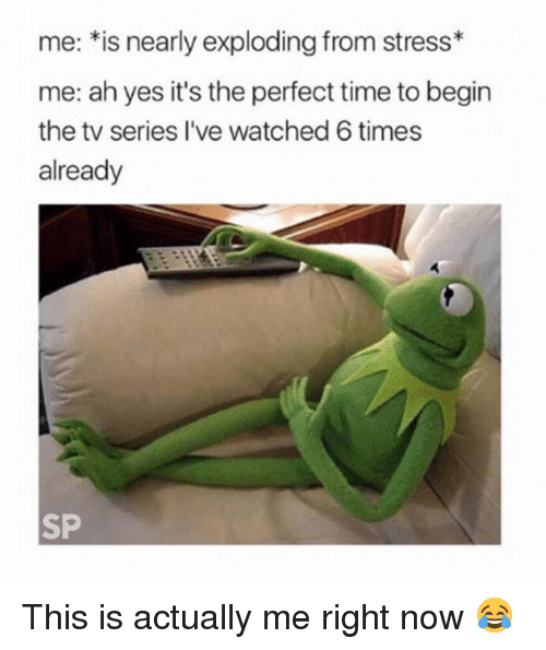 Time, Yes, and Stress: me: *is nearly exploding from stress*  me: ah yes it's the perfect time to begin  the tv series I've watched 6 times  already  SP This is actually me right now 😂