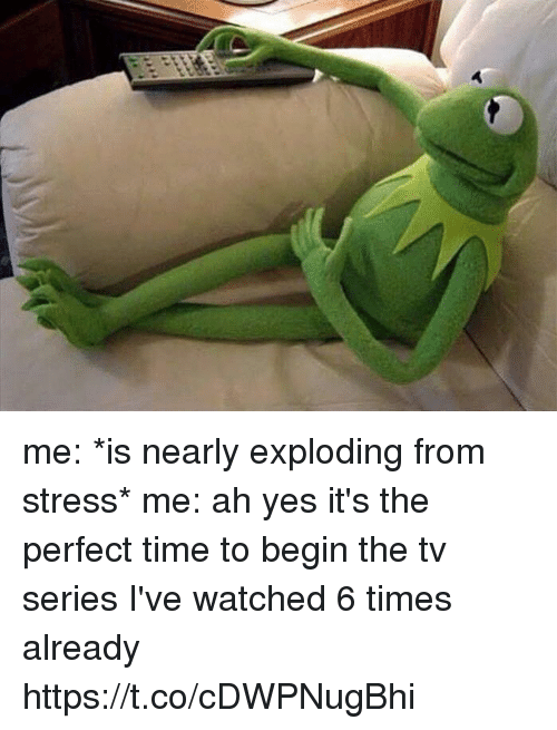 Time, Girl Memes, and Yes: me: *is nearly exploding from stress*  me: ah yes it's the perfect time to begin the tv series I've watched 6 times already https://t.co/cDWPNugBhi