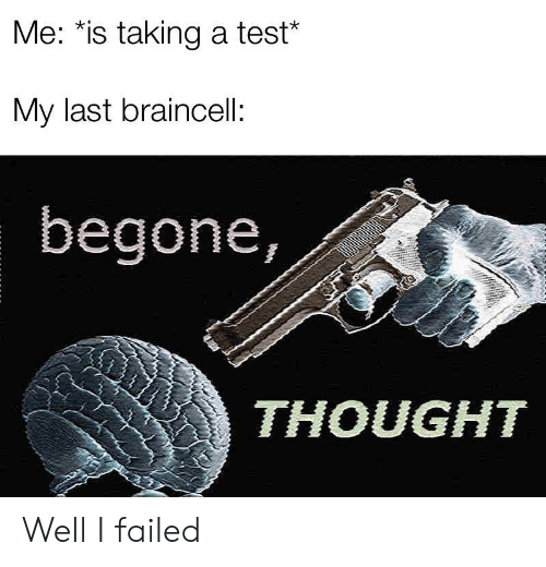 Begone: Me: *is taking a test*  My last braincell:  begone,  THOUGHT Well I failed