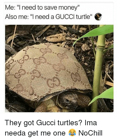 "Funny, Gucci, and Money: Me: l need to save money""  Also me: ""need a GUCCl turtle"" They got Gucci turtles? Ima needa get me one 😂 NoChill"