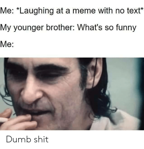 """No Text: Me: """"Laughing at a meme with no text  My younger brother: What's so funny  Me: Dumb shit"""