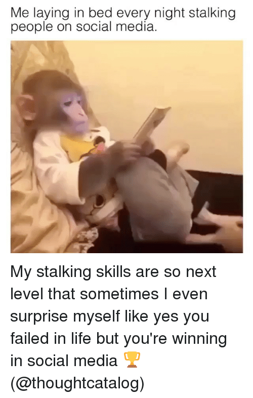 Life, Social Media, and Stalking: Me laying in bed every night stalking  people on social media My stalking skills are so next level that sometimes I even surprise myself like yes you failed in life but you're winning in social media 🏆 (@thoughtcatalog)