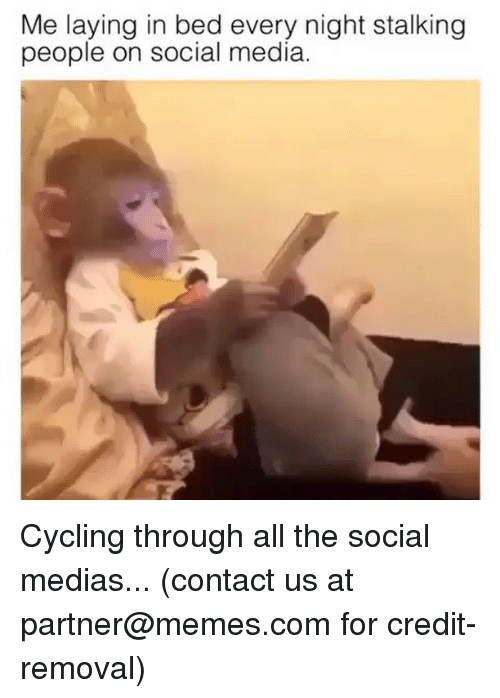 Memes, Social Media, and Stalking: Me laying in bed every night stalking  people on social media Cycling through all the social medias... (contact us at partner@memes.com for credit-removal)