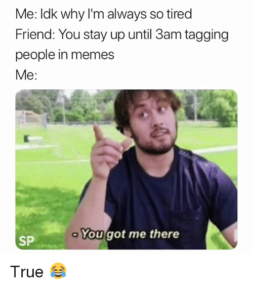 Memes, True, and Got: Me: ldk why I'm always so tired  Friend: You stay up until 3am tagging  people in memes  Me:  You got me there  SP True 😂
