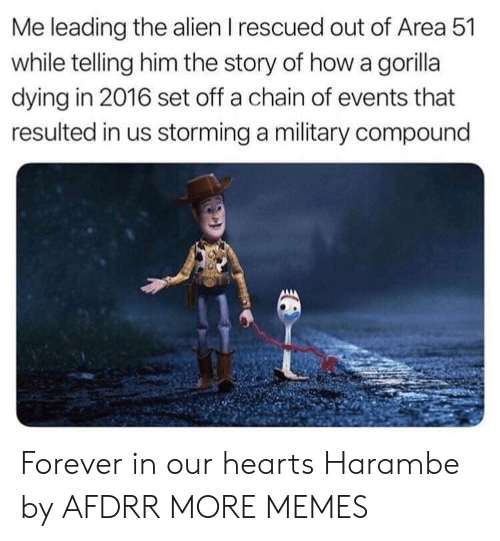 Harambe: Me leading the alien I rescued out of Area 51  while telling him the story of how a gorilla  dying in 2016 set off a chain of events that  resulted in us storming a military compound Forever in our hearts Harambe by AFDRR MORE MEMES