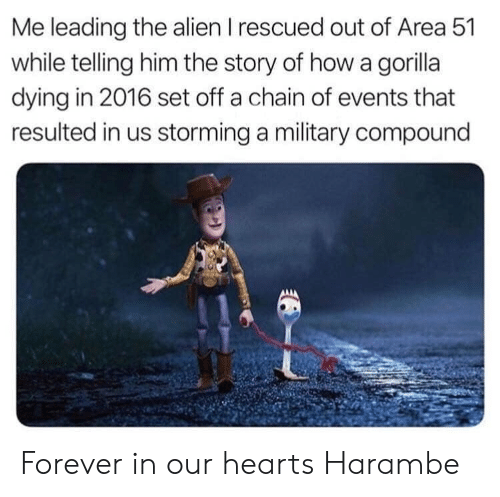 Harambe: Me leading the alien I rescued out of Area 51  while telling him the story of how a gorilla  dying in 2016 set off a chain of events that  resulted in us storming a military compound Forever in our hearts Harambe