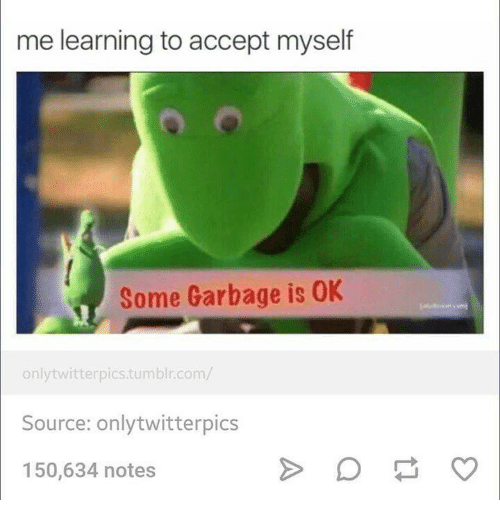 twitterpated: me learning to accept myself  Some Garbage is 0K  only twitterpics tumblr.com/  Source: onlytwitterpics  150,634 notes
