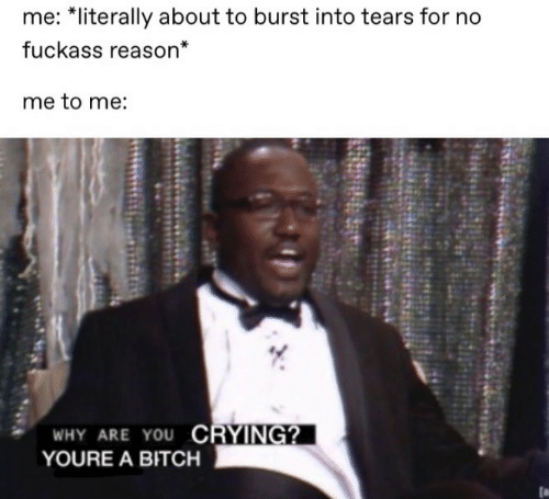 burst into tears: me: *literally about to burst into tears for no  fuckass reason*  me to me:  WHY ARE YOU CRYING?  YOURE A BITCH