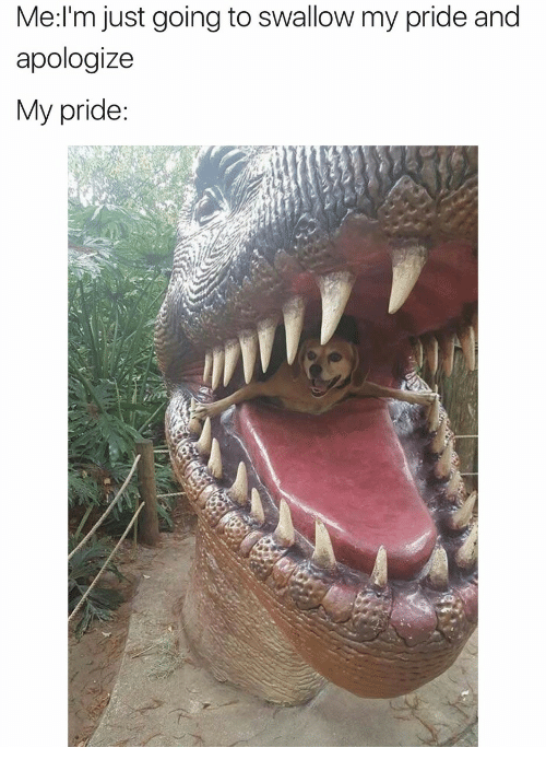 my pride: Me:l'm just going to swallow my pride and  apologize  My pride