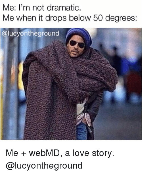 webMD: Me: l'm not dramatic  Me when it drops below 50 degrees:  @lucyontheground Me + webMD, a love story. @lucyontheground