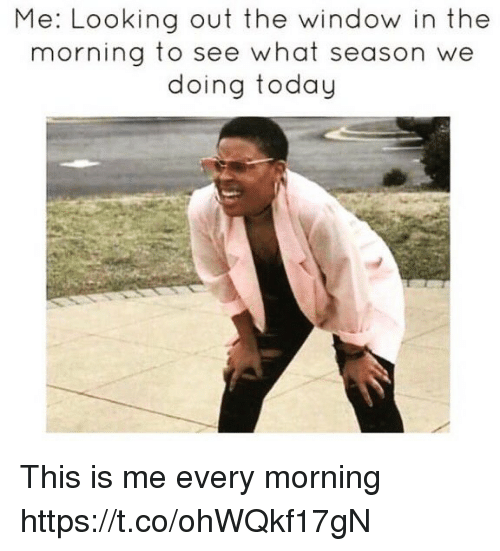 Funny, Today, and Looking: Me: Looking out the window in the  morning to see what season we  doing today This is me every morning https://t.co/ohWQkf17gN