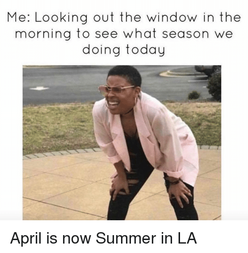 Looking Out The Window: Me: Looking out the window in the  morning to see what season  we  doing today April is now Summer in LA