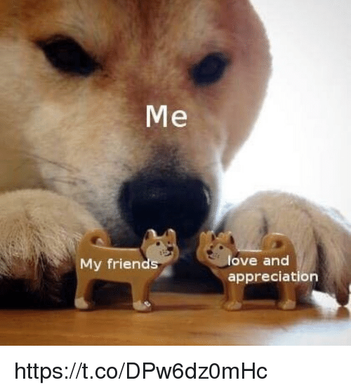 Love, Memes, and 🤖: Me  love and  appreciation  My frien https://t.co/DPw6dz0mHc