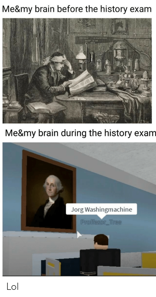 my brain: Me&my brain before the history exam  Me&my brain during the history exam  Jorg Washingmachine  Proffesor_Tree Lol