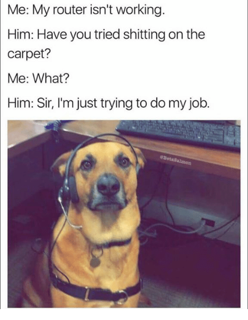 Memes, Router, and 🤖: Me: My router isn't working.  Him: Have you tried shitting on the  carpet?  Me: What?  Him: Sir, I'm just trying to do my job.