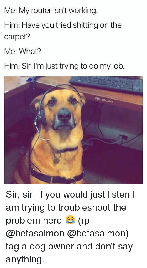 Funny, Router, and Say Anything...: Me: My router isn't working  Him: Have you tried shitting on the  carpet?  Me: What?  Him: Sir, l'm just trying to do my job.  に |  eBetaSalom  mon Sir, sir, if you would just listen I am trying to troubleshoot the problem here 😂 (rp: @betasalmon @betasalmon) tag a dog owner and don't say anything.