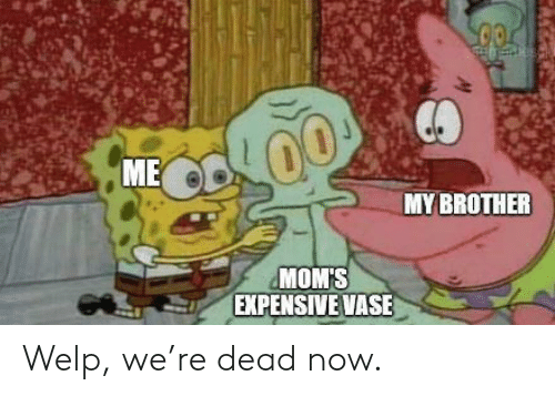 welp: ME  MYBROTHER  MOM'S  EXPENSIVE VASE Welp, we're dead now.