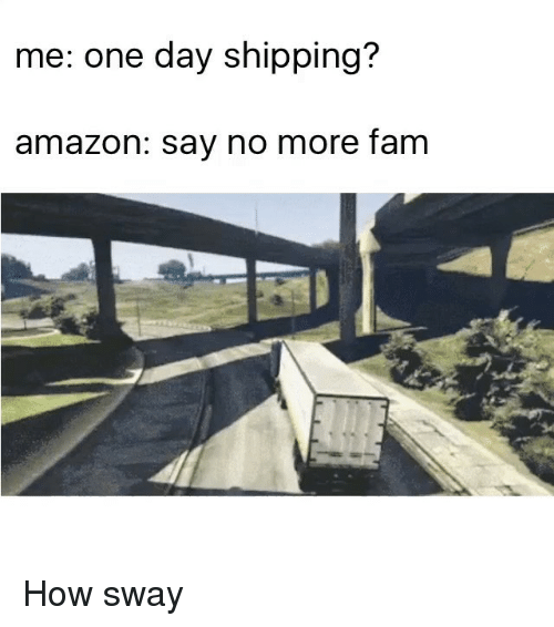 Amazon, Funny, and Memes: me: ne day shipping?  amazon: say no more fam How sway