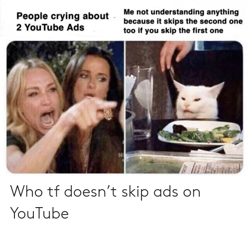 skips: Me not understanding anything  because it skips the second one  too if you skip the first one  People crying about  2 YouTube Ads Who tf doesn't skip ads on YouTube