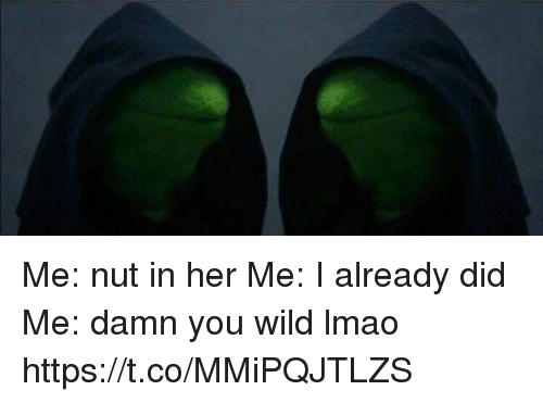 Lmao, Wild, and Hood: Me: nut in her Me: I already did Me: damn you wild lmao https://t.co/MMiPQJTLZS