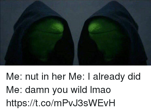 Lmao, Memes, and Wild: Me: nut in her Me: I already did Me: damn you wild lmao https://t.co/mPvJ3sWEvH