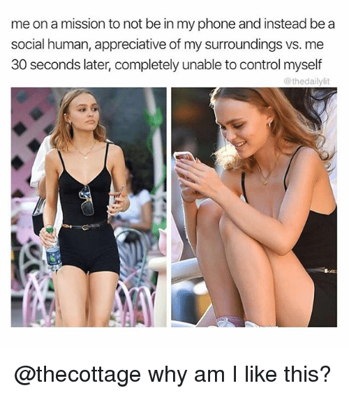 Lit, Memes, and Phone: me on a mission to not be in my phone and instead be a  social human, appreciative of my surroundings vs. me  30 seconds later, completely unable to control myself  @thedaily lit @thecottage why am I like this?