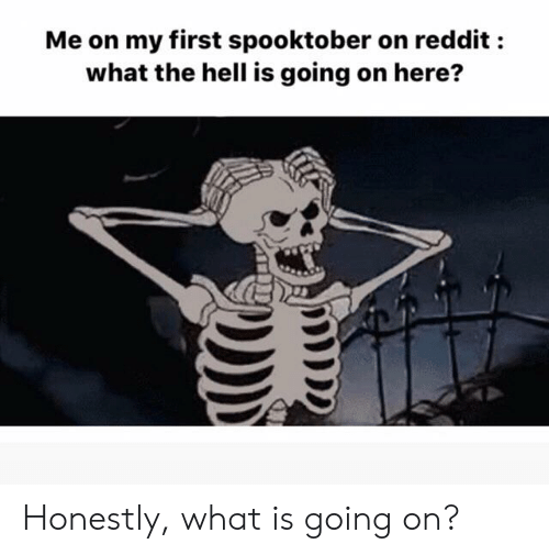 What The Hell Is Going On Here: Me on my first spooktober on reddit :  what the hell is going on here? Honestly, what is going on?