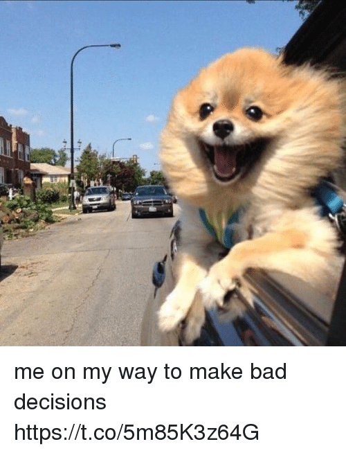 Bad, Girl Memes, and Decisions: me on my way to make bad decisions https://t.co/5m85K3z64G