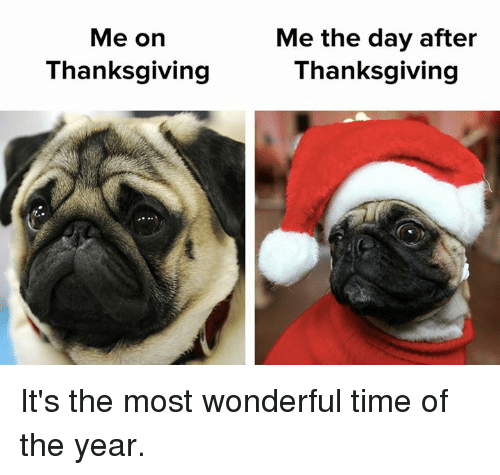 Thanksgiving |Day After Thanksgiving