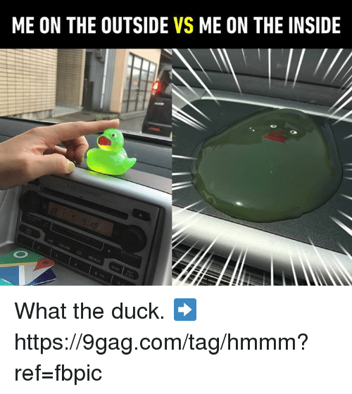 9gag, Dank, and Duck: ME ON THE OUTSIDE VS ME ON THE INSIDE What the duck.  ➡️ https://9gag.com/tag/hmmm?ref=fbpic