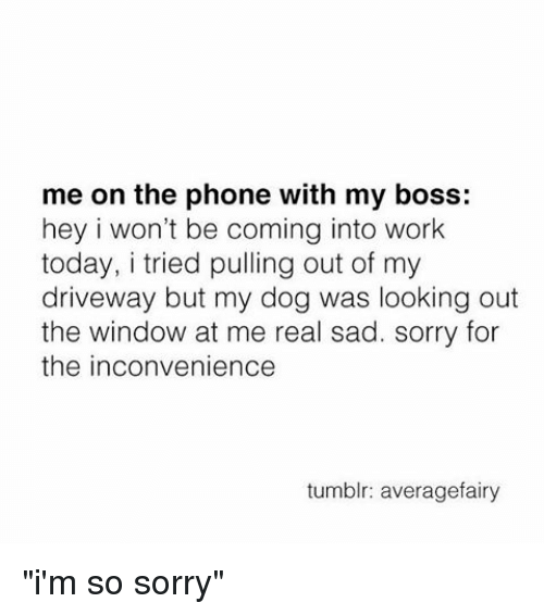 """Looking Out The Window: me on the phone with my boss:  hey i won't be coming into work  today, i tried pulling out of my  driveway but my dog was looking out  the window at me real sad. sorry for  the inconvenience  tumblr: averagefairy """"i'm so sorry"""""""