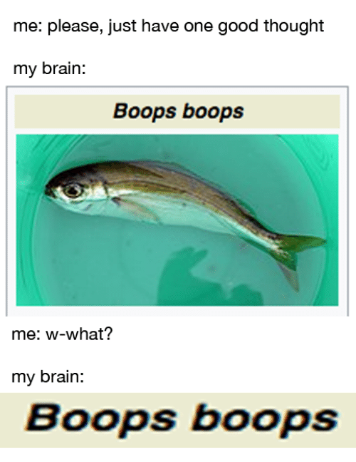 W What: me: please, just have one good thought  my brain:  Boops boops  me: w-what?  my brain:  Boops boops