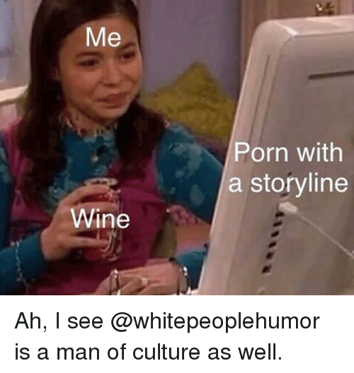 Memes, Wine, and Porn: Me  Porn with  a storyline  Wine Ah, I see @whitepeoplehumor is a man of culture as well.