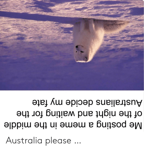 Fate: Me posting a meme in the middle  of the night and waiting for the  Australians decide my fate Australia please …