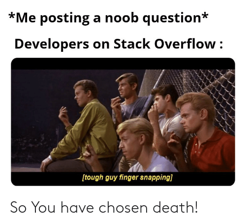 snapping: *Me posting a noob question*  Developers on Stack Overflow  [tough guy finger snapping] So You have chosen death!
