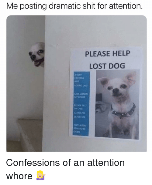 My House, Shit, and Lost: Me posting dramatic shit for attention  PLEASE HELP  LOST DOG  A VERY  RIENOLY  AND  LOVING DOG  AST SEEN IN  MY HOUSE  PLEASE TEXT  OR CALL  12345678  87654321  EWARD BE  GIVEN Confessions of an attention whore 💁🏼