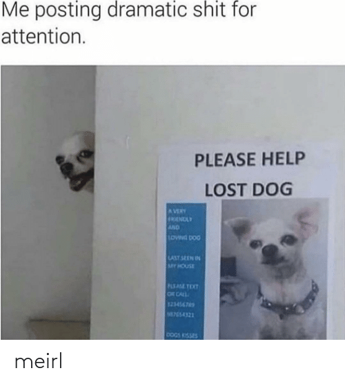 Posting: Me posting dramatic shit for  attention.  PLEASE HELP  LOST DOG  AVERY  FRENDLY  AND  LOWNG DOG  LAST SEEN IN  MY HOUSE  PLEASE TEXT  OR CALL  123456765  M755-4321  DOGS KISSES meirl