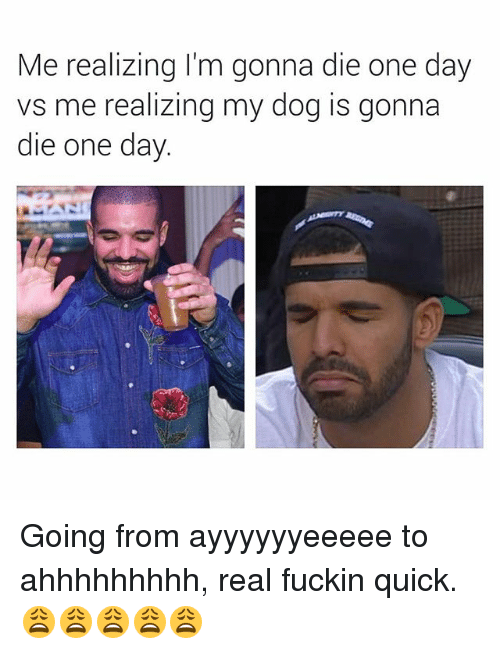 Dank Memes, Dog, and One: Me realizing I'm gonna die one day  vs me realizing my dog is gonna  die one day Going from ayyyyyyeeeee to ahhhhhhhhh, real fuckin quick. 😩😩😩😩😩