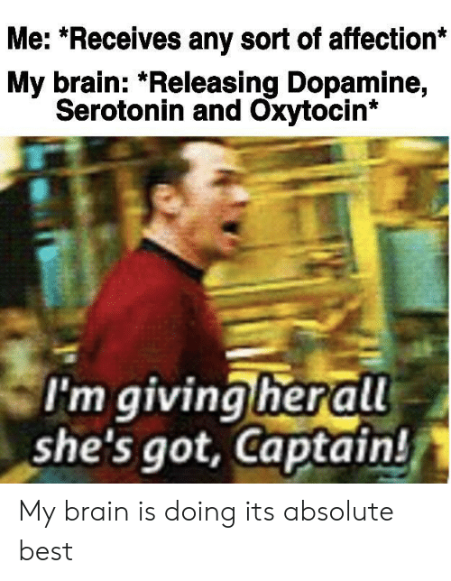 affection: Me: *Receives any sort of affection*  My brain: *Releasing Dopamine,  Serotonin and Oxytocin*  I'm giving herall  she's got, Captain! My brain is doing its absolute best