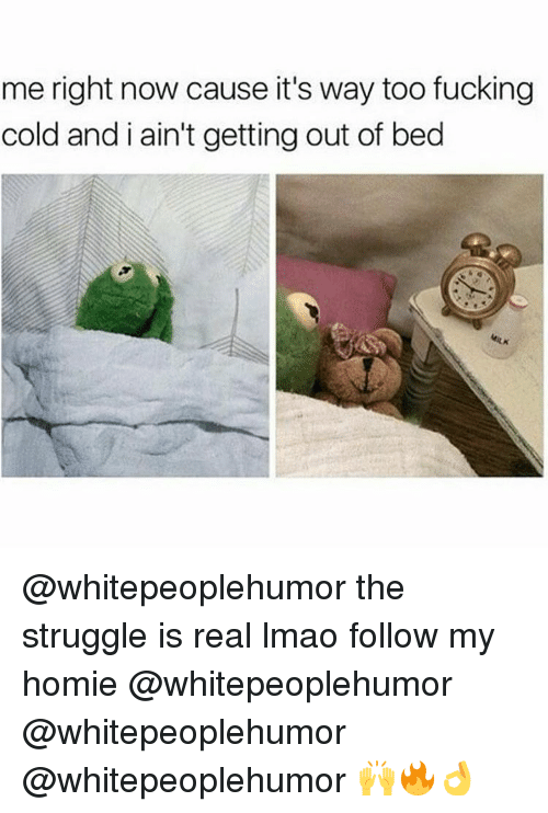 Homie, Memes, and The Struggle Is Real: me right now cause it's way too fucking  cold and i ain't getting out of bed @whitepeoplehumor the struggle is real lmao follow my homie @whitepeoplehumor @whitepeoplehumor @whitepeoplehumor 🙌🔥👌
