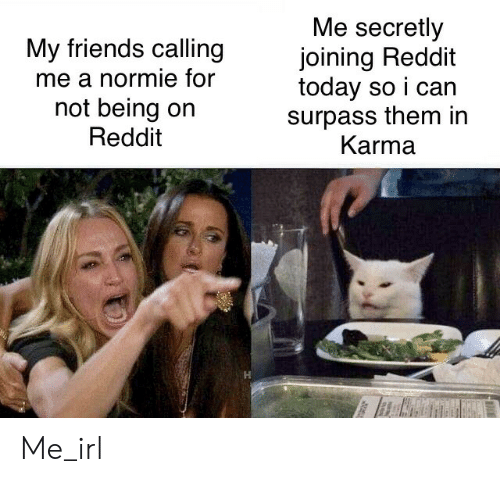 Normie: Me secretly  joining Reddit  today so i can  surpass them in  Karma  My friends calling  me a normie for  not being on  Reddit Me_irl