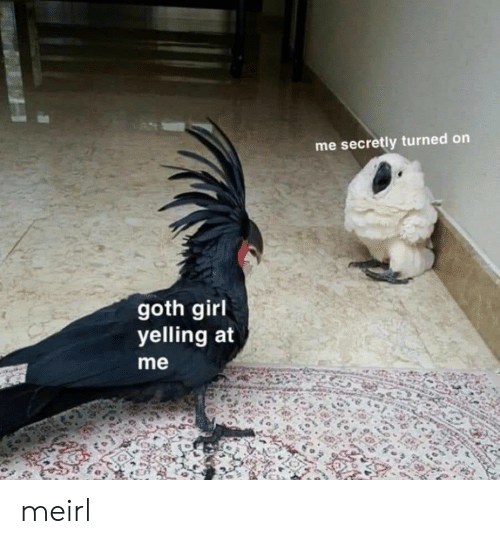 goth girl: me secretly turned on  goth girl  yelling at  me meirl