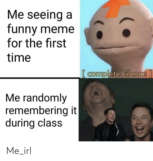 Silence: Me seeing a  funny meme  for the first  time  [ complete silence]  Me randomly  remembering it  during class Me_irl