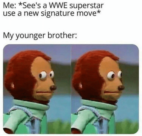 World Wrestling Entertainment: Me: *See's a WWE superstar  use a new signature move*  My younger brother: