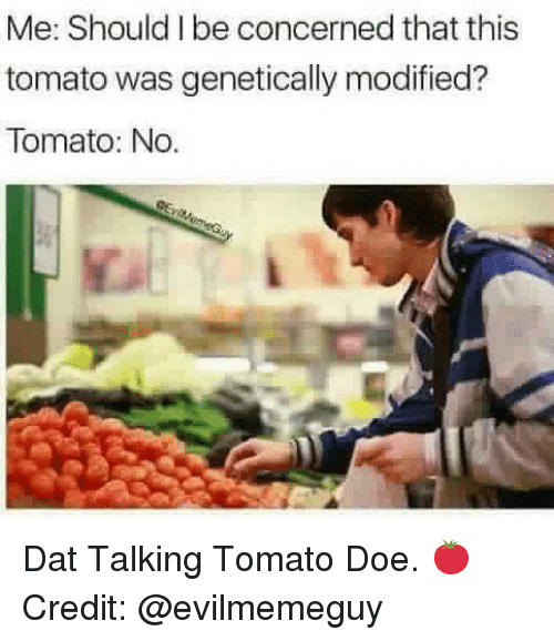 Doe, Dank Memes, and Credited: Me: Should I be concerned that this  tomato was genetically modified?  Tomato: No. Dat Talking Tomato Doe. 🍅 Credit: @evilmemeguy