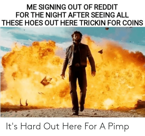 All These Hoes: ME SIGNING OUT OF REDDIT  FOR THE NIGHT AFTER SEEING ALL  THESE HOES OUT HERE TRICKIN FOR COINS It's Hard Out Here For A Pimp